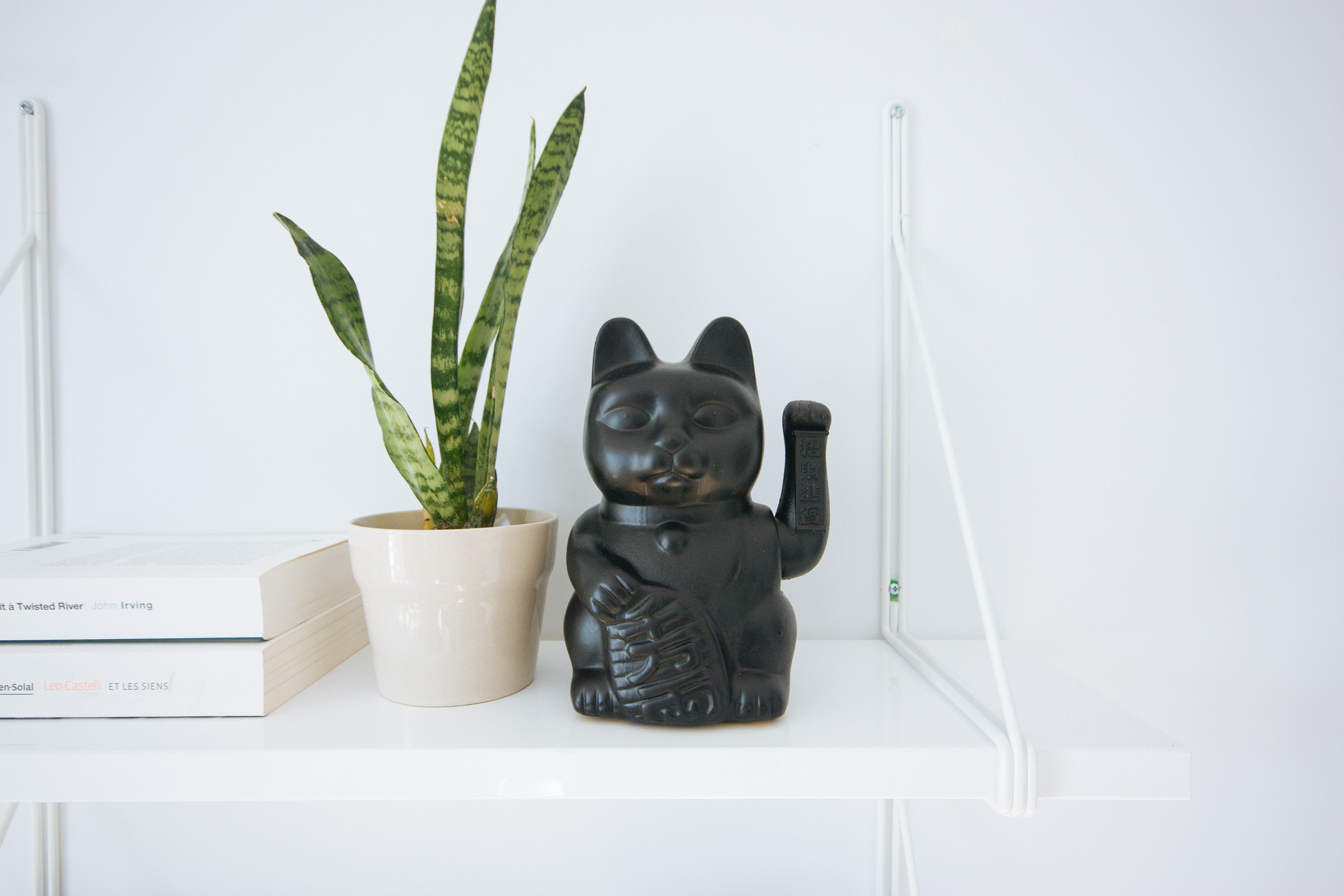観葉植物と招き猫