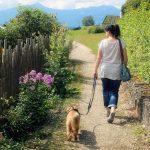 女性と犬散歩