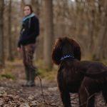 森の中犬と人間