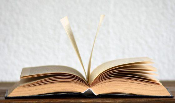辞書を引いて調査する