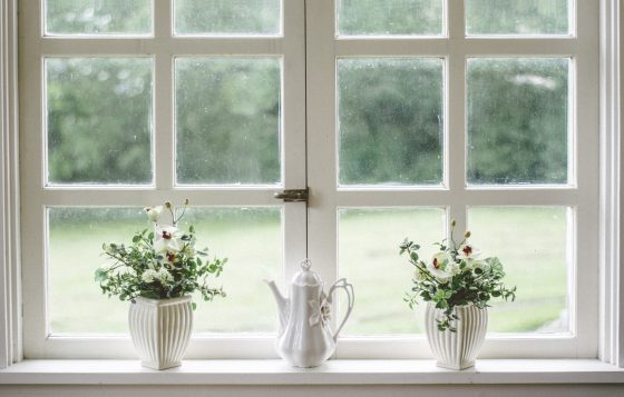 窓辺に植物