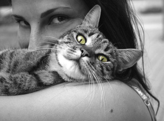 cat girl happiness
