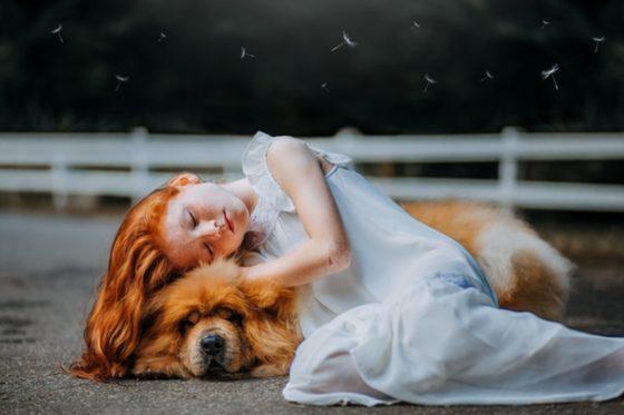 天使のような女の子と犬(チャウチャウ)