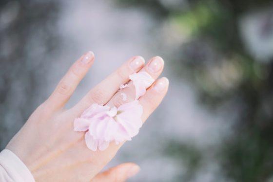 手と花びら