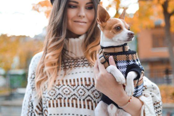 小型の犬を抱く女性