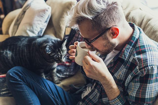 男の人と猫