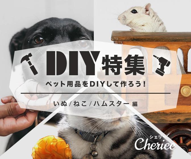 ペット用品をDIYして作ろう!DIY実用例まとめ